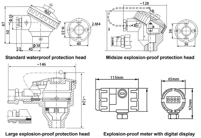 RTD sensor meter and protection head type