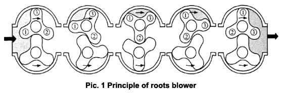 principle of roots blower