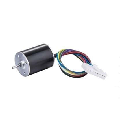 7000 rpm 12V 24V Small Brushless DC Motor