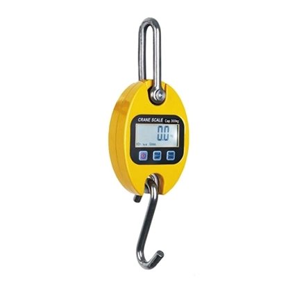 Mini Crane Scale 30kg/60kg/150kg/200kg/300kg to 500kg