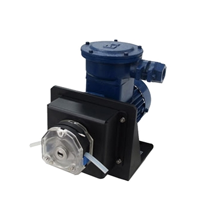 2200 GPD Explosion-Proof Peristaltic Pump