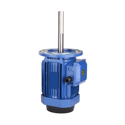180/250W 160mm Long Shaft Induction Motor, 2700 rpm