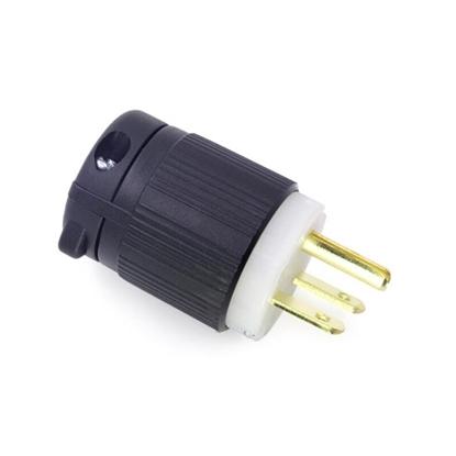 15A 250V Locking Plug, 2 Pole, 3 Wire